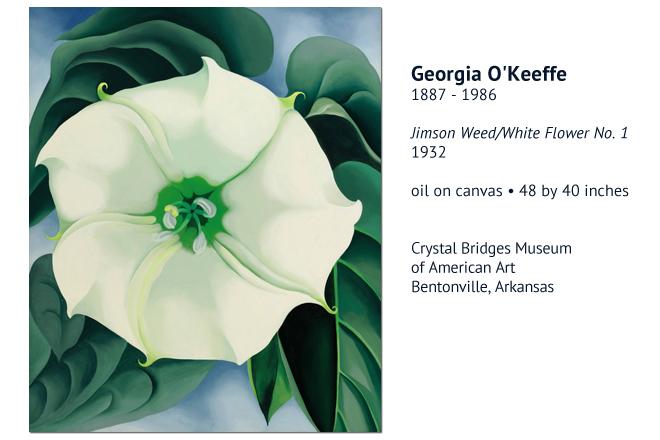 georgia-okeefe-jimson-weed-white-flower